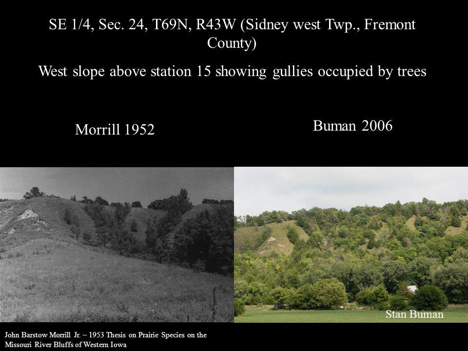 SE 1/4, Sec. 24, T69N, R43W (Sidney west Twp., Fremont County) West slope above station 15 showing gullies occupied by trees Morrill 1952 Buman 2006 S