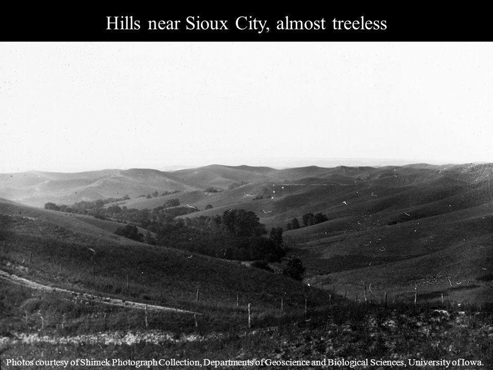 Hills Above Sioux City Photos courtesy of Shimek Photograph Collection, Departments of Geoscience and Biological Sciences, University of Iowa.