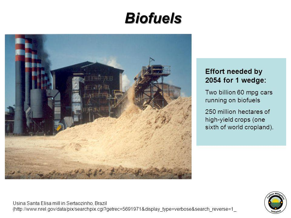 Biofuels Effort needed by 2054 for 1 wedge: Two billion 60 mpg cars running on biofuels 250 million hectares of high-yield crops (one sixth of world cropland).
