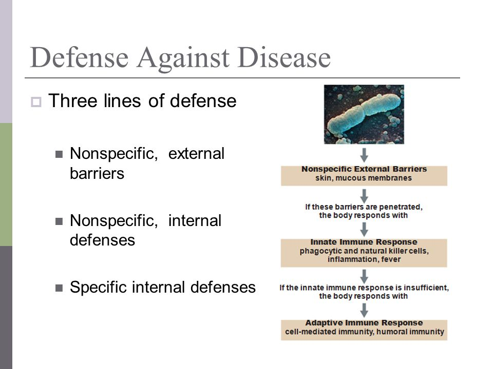 Defense Against Disease Three lines of defense Nonspecific, external barriers Nonspecific, internal defenses Specific internal defenses