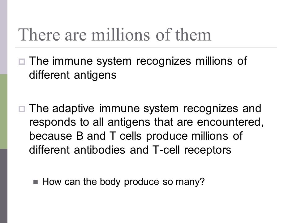 There are millions of them The immune system recognizes millions of different antigens The adaptive immune system recognizes and responds to all antig