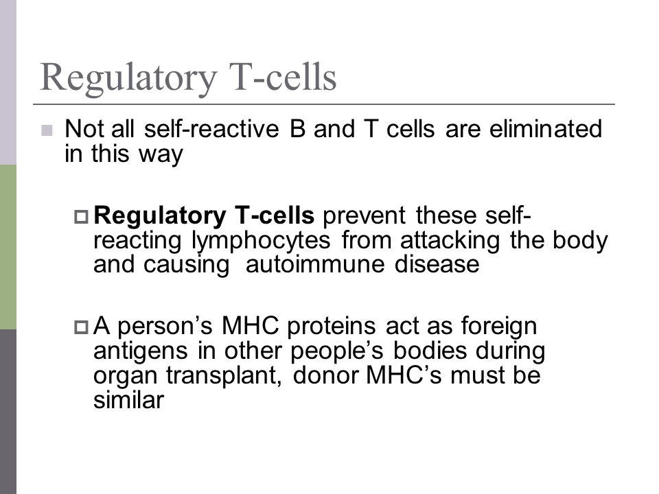 Regulatory T-cells Not all self-reactive B and T cells are eliminated in this way Regulatory T-cells prevent these self- reacting lymphocytes from att