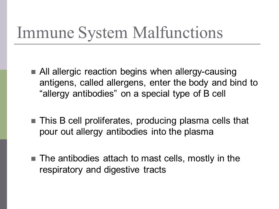 Immune System Malfunctions All allergic reaction begins when allergy-causing antigens, called allergens, enter the body and bind to allergy antibodies