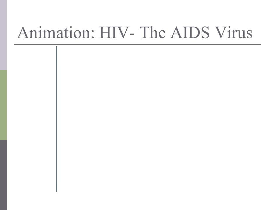 Animation: HIV- The AIDS Virus
