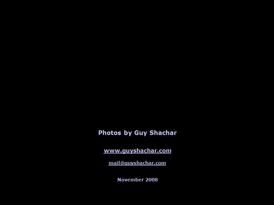 Photos by Guy Shachar www.guyshachar.com mail@guyshachar.com www.guyshachar.com mail@guyshachar.com November 2008