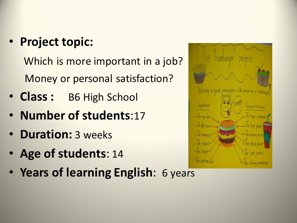 Aims: Writing opinion essays according to the Hamburger project outline.