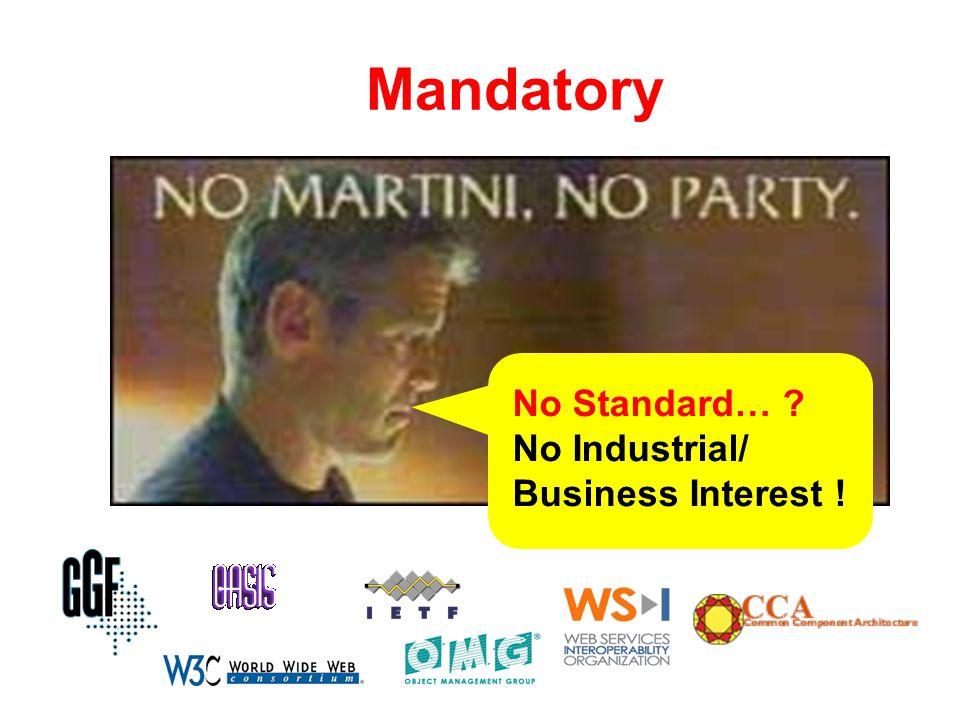 Mandatory No Standard… ? No Industrial/ Business Interest !