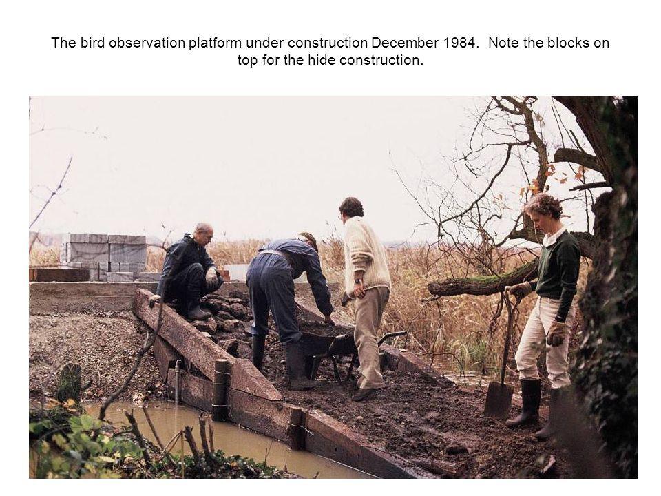 The bird observation platform under construction December 1984.