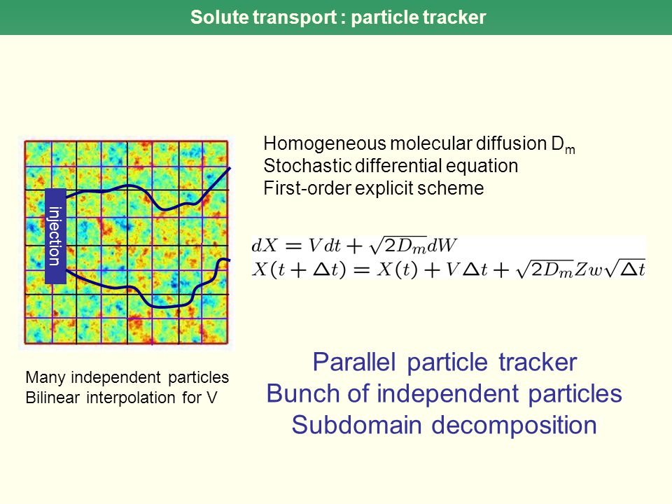 injection Solute transport : particle tracker Many independent particles Bilinear interpolation for V Homogeneous molecular diffusion D m Stochastic d