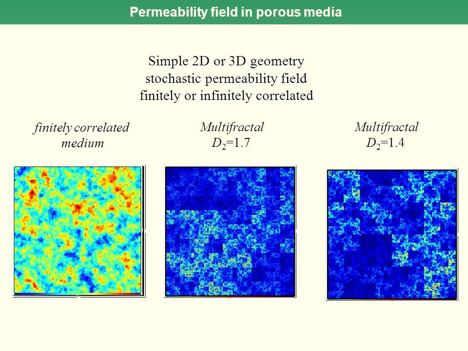 Permeability field in porous media Simple 2D or 3D geometry stochastic permeability field finitely or infinitely correlated Multifractal D 2 =1.7 fini
