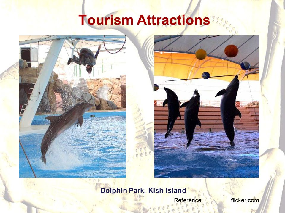 Tourism Attractions Reference: flicker.com Dolphin Park, Kish Island