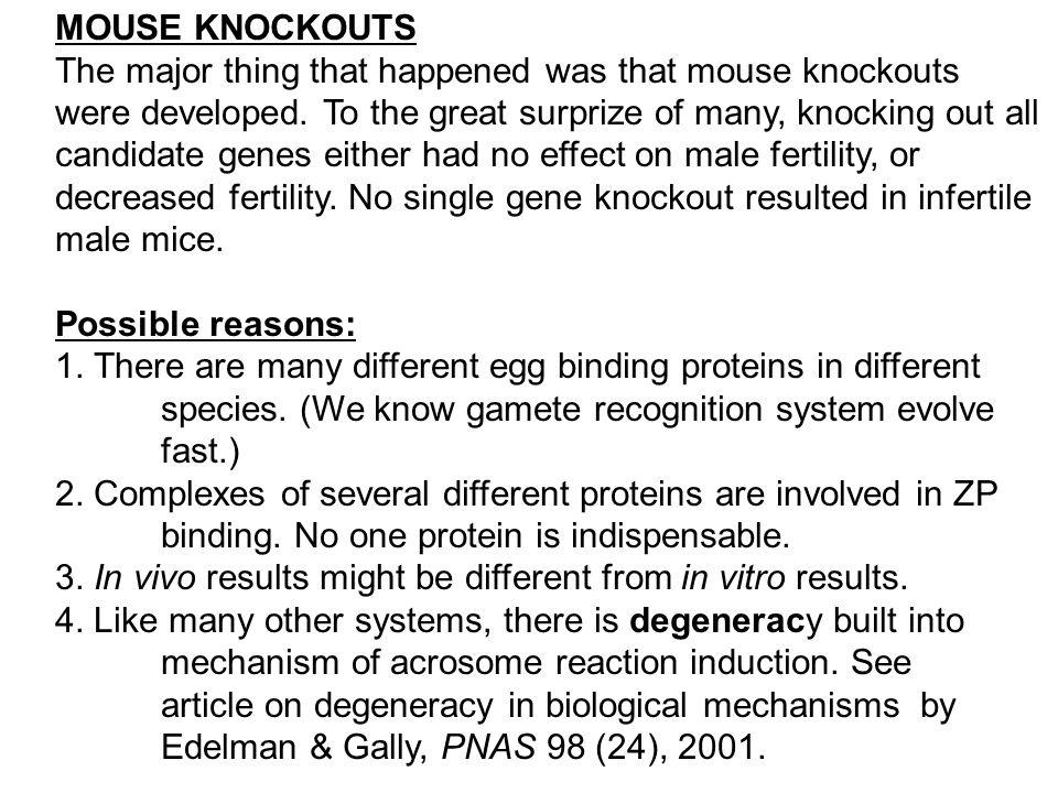 MOUSE KNOCKOUTS The major thing that happened was that mouse knockouts were developed. To the great surprize of many, knocking out all candidate genes