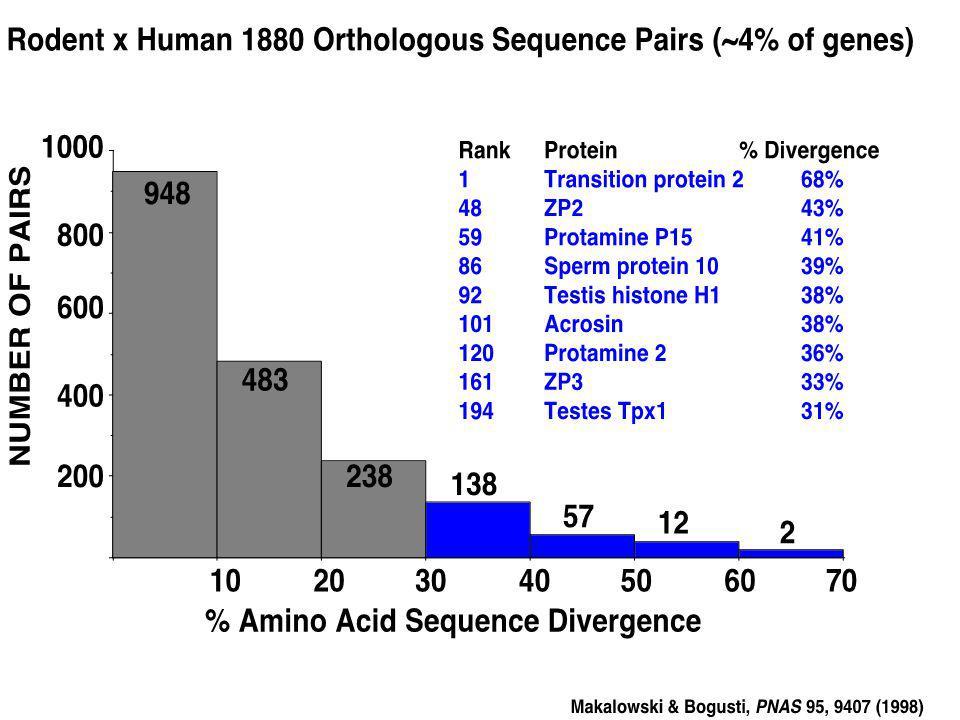 Zhao et al, Mol. & Cell. Biol. 22(9), 3111, 2002 NH2