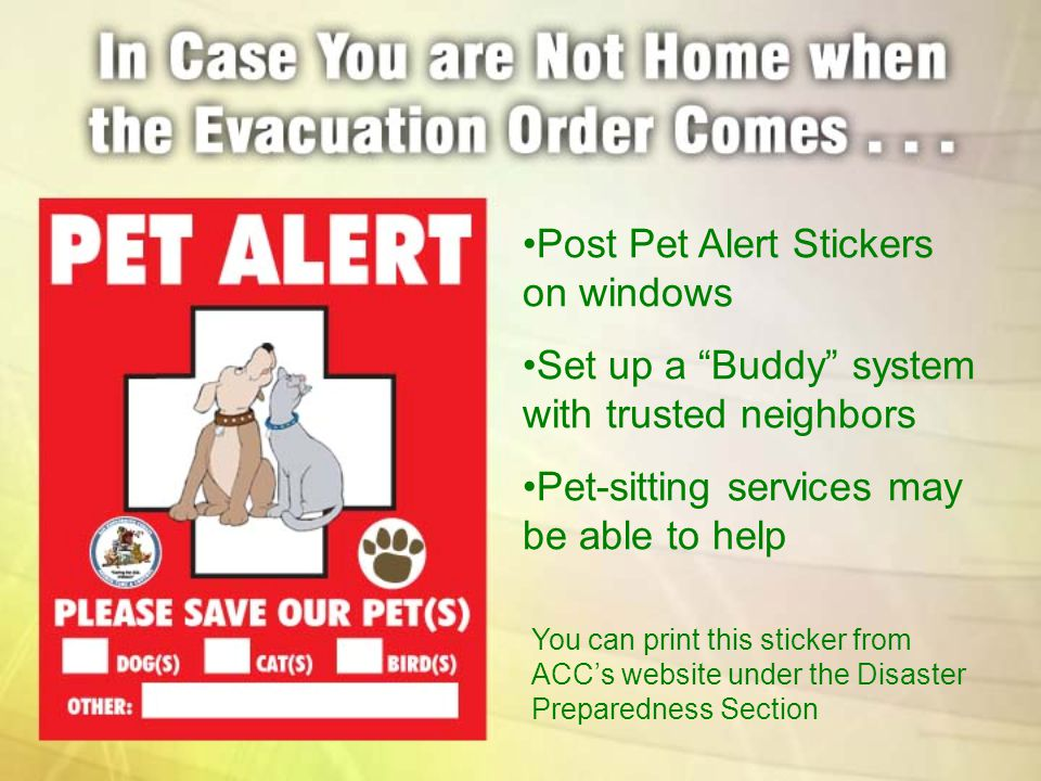 Post Pet Alert Stickers on windows Set up a Buddy system with trusted neighbors Pet-sitting services may be able to help You can print this sticker fr