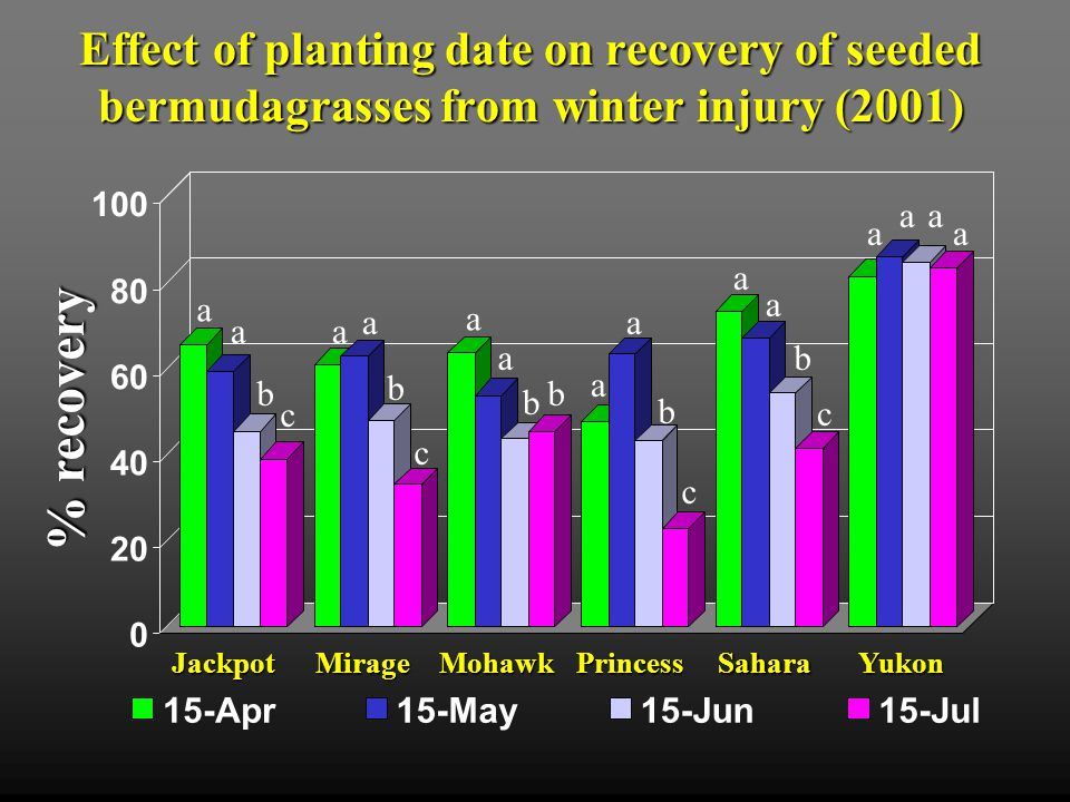 Effect of planting date on recovery of seeded bermudagrasses from winter injury (2001) 0 20 40 60 80 100 15-Apr15-May15-Jun15-Jul % recovery MirageMohawkPrincessSaharaYukonJackpot a a b c a a b b a a b c a a b c a a b c a a a a