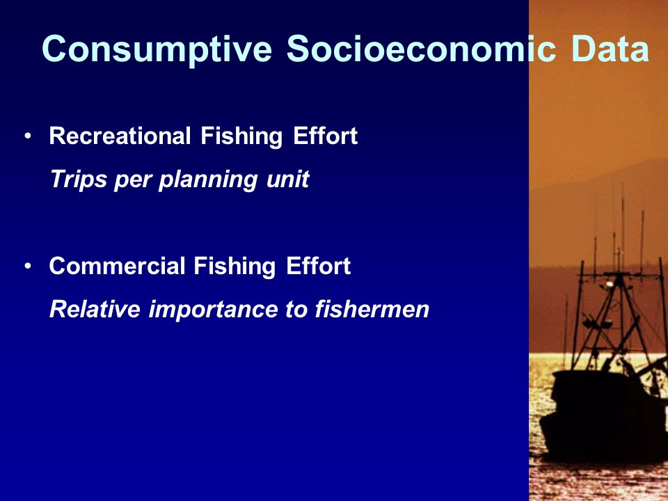 Recreational Fishing Effort Trips per planning unit Commercial Fishing Effort Relative importance to fishermen Consumptive Socioeconomic Data