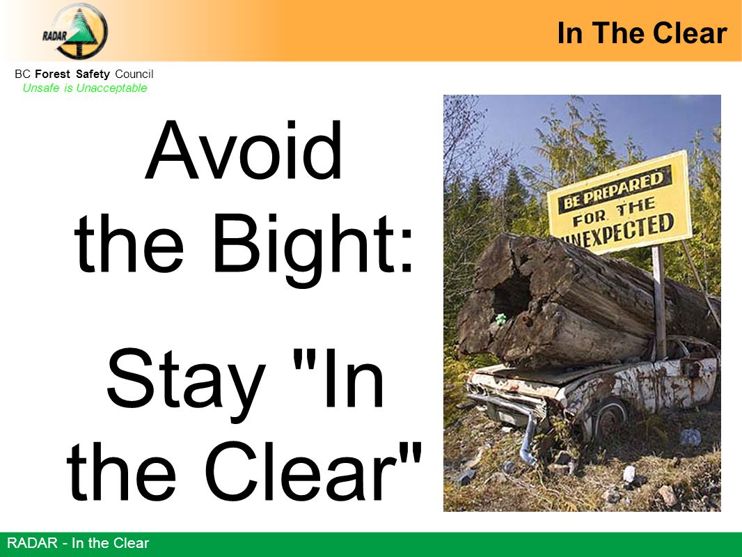 BC Forest Safety Council Unsafe is Unacceptable RADAR - In the Clear Avoid the Bight: Stay In the Clear In The Clear