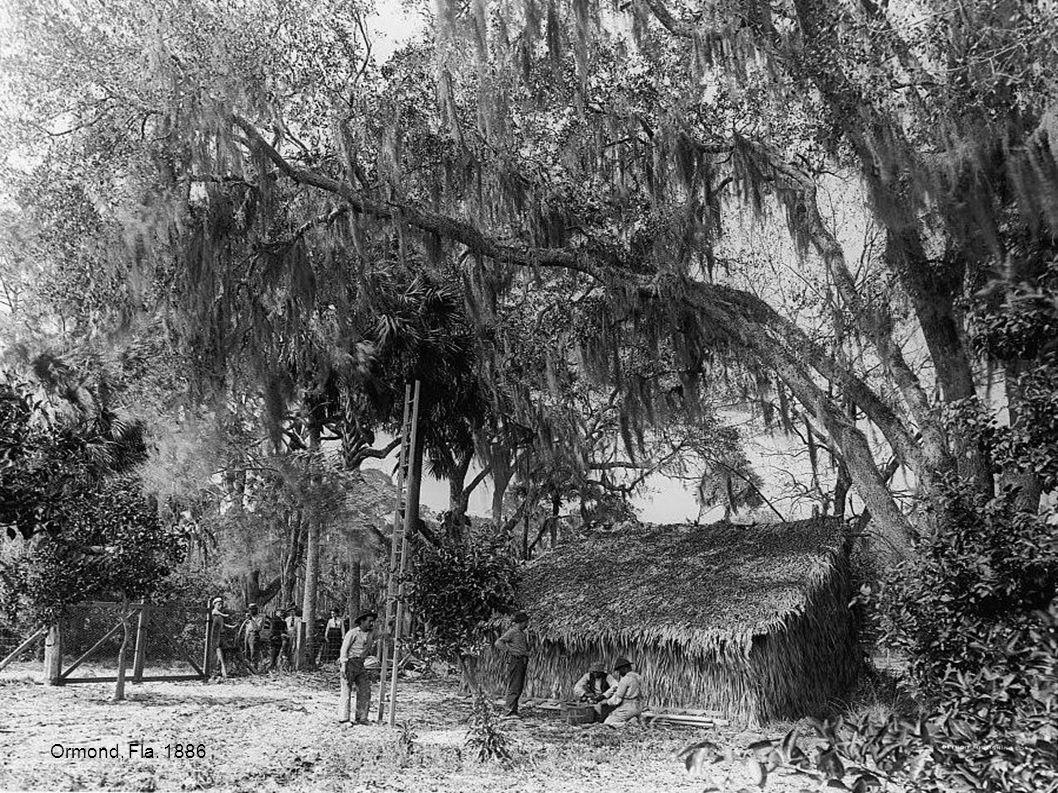 Ormond, Fla. 1886