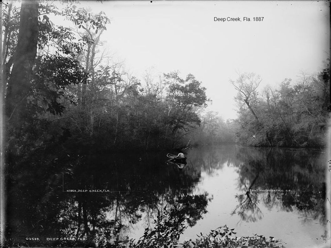 Deep Creek, Fla. 1887
