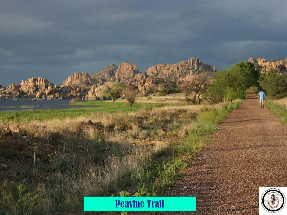 8 Peavine Trail
