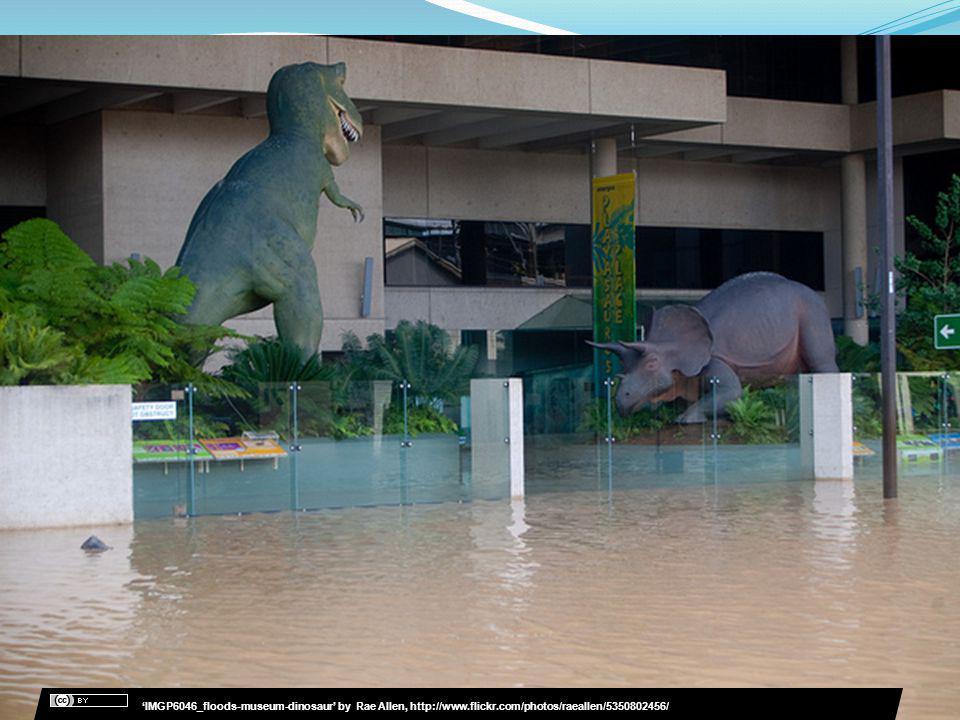 IMGP6046_floods-museum-dinosaur by Rae Allen, http://www.flickr.com/photos/raeallen/5350802456/