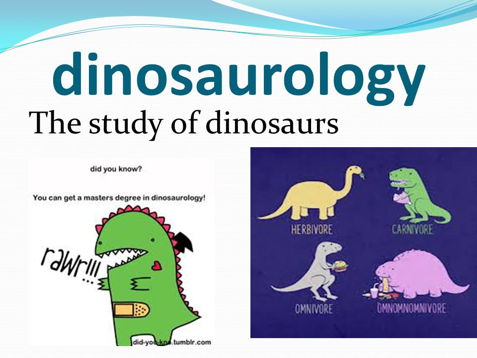 dinosaurology The study of dinosaurs