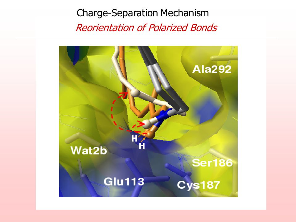 Charge-Separation Mechanism Reorientation of Polarized Bonds H H