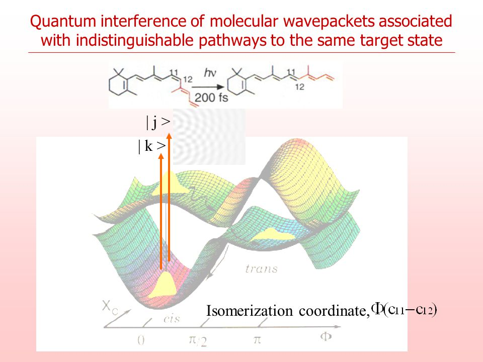 | k > | j > Isomerization coordinate, Quantum interference of molecular wavepackets associated with indistinguishable pathways to the same target stat