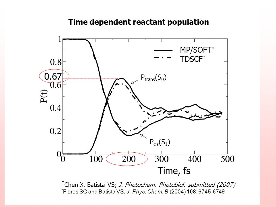Time dependent reactant population P trans (S 0 ) P cis (S 1 ) Chen X, Batista VS; J. Photochem. Photobiol. submitted (2007) * Flores SC and Batista V