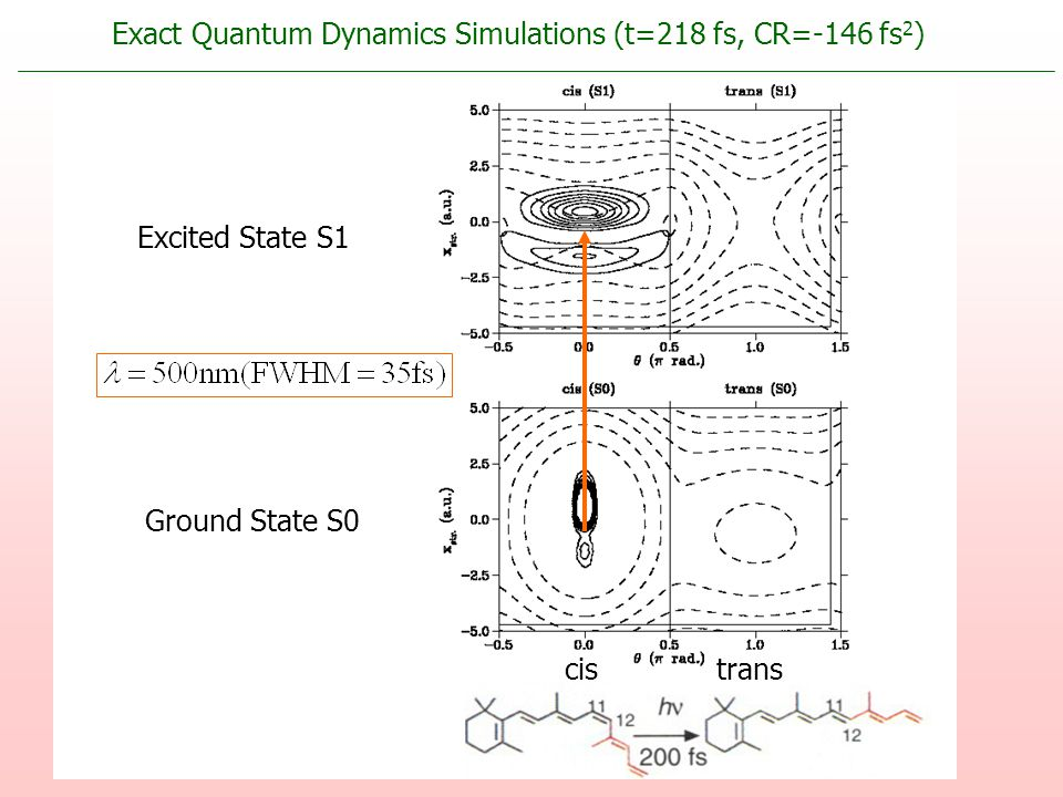 Excited State S1 Ground State S0 cistrans Exact Quantum Dynamics Simulations (t=218 fs, CR=-146 fs 2 )