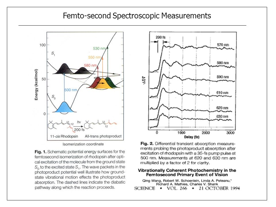 Femto-second Spectroscopic Measurements