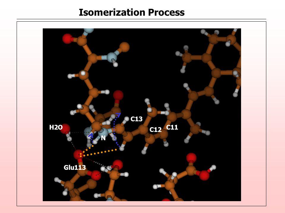 Isomerization Process C12 C11 N H2O Glu113 C13