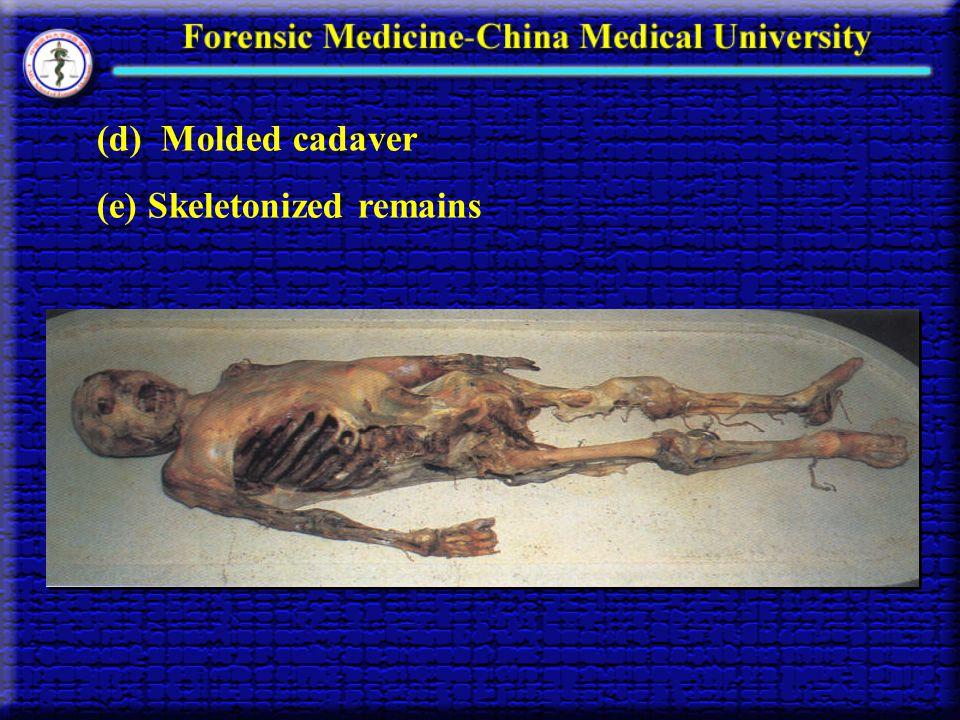 (d) Molded cadaver (e) Skeletonized remains