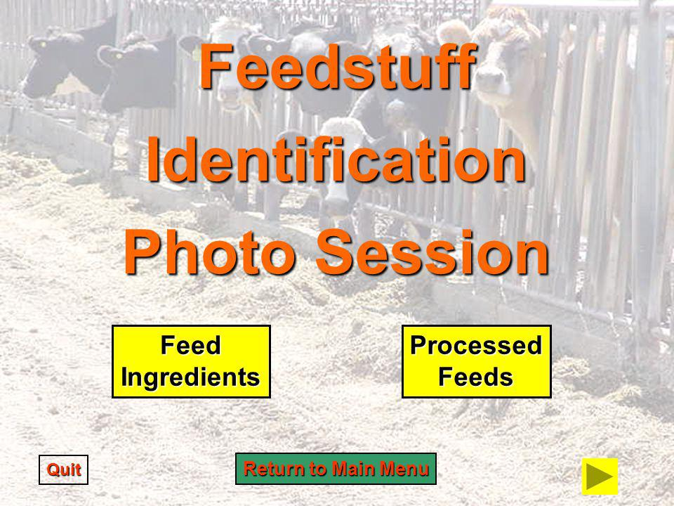 Feedstuff Identification Photo Session Quit Feed Ingredients Processed Feeds Return to Main Menu Return to Main Menu