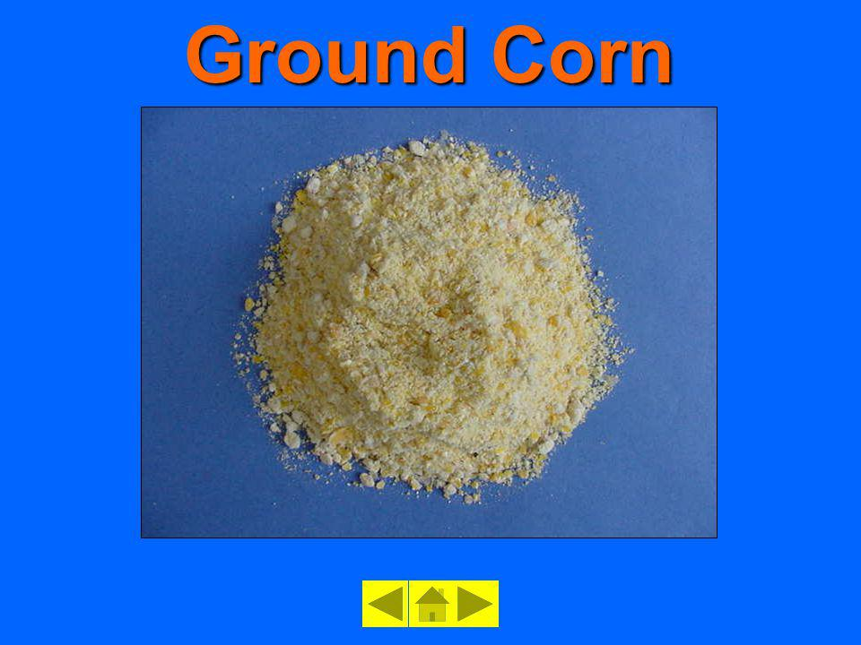 Ground Corn