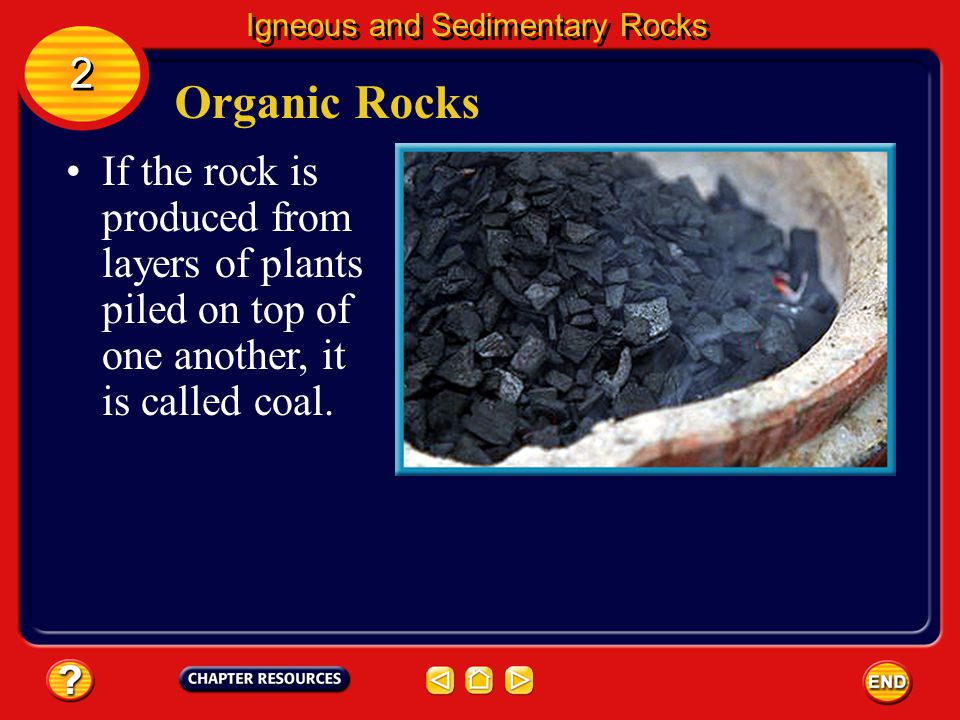 Organic Rocks Chalk and coal are examples of the group of sedimentary rocks called organic rocks. Igneous and Sedimentary Rocks 2 2 Living matter dies