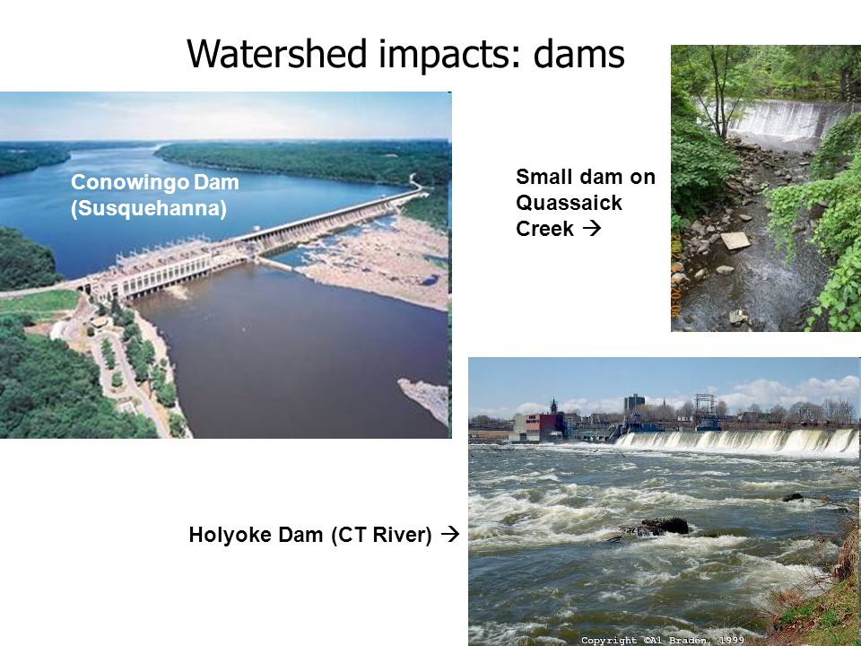 Conowingo Dam (Susquehanna) Holyoke Dam (CT River) Watershed impacts: dams Small dam on Quassaick Creek