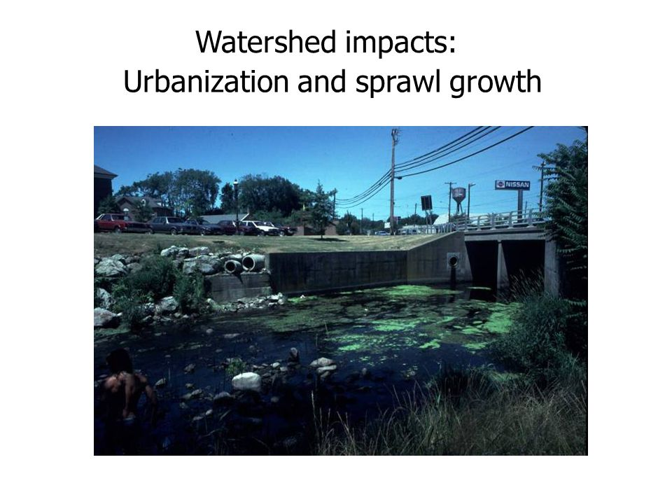 Urbanization and sprawl growth Watershed impacts: