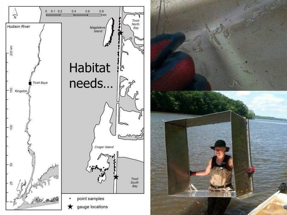 Habitat needs…