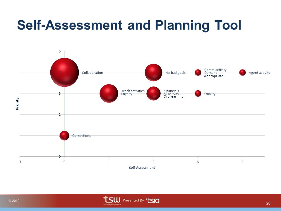 Self-Assessment and Planning Tool 20