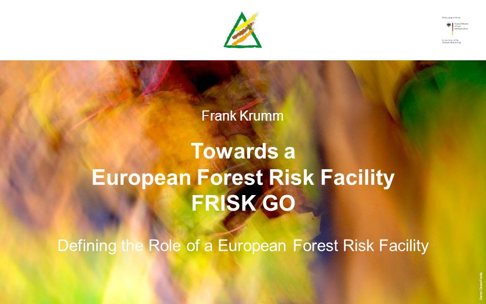 Frank Krumm Towards a European Forest Risk Facility FRISK GO Defining the Role of a European Forest Risk Facility