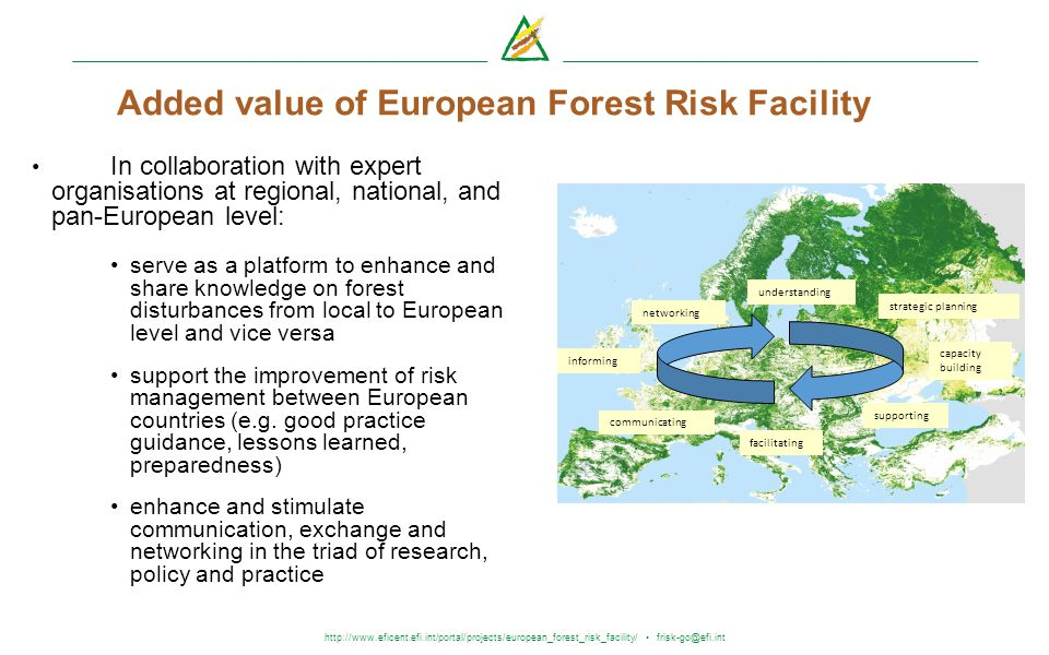 http://www.eficent.efi.int/portal/projects/european_forest_risk_facility/ frisk-go@efi.int Added value of European Forest Risk Facility In collaborati
