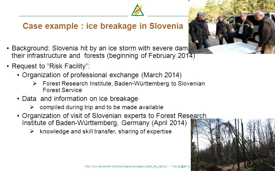 http://www.eficent.efi.int/portal/projects/european_forest_risk_facility/ frisk-go@efi.int Case example : ice breakage in Slovenia Background: Sloveni