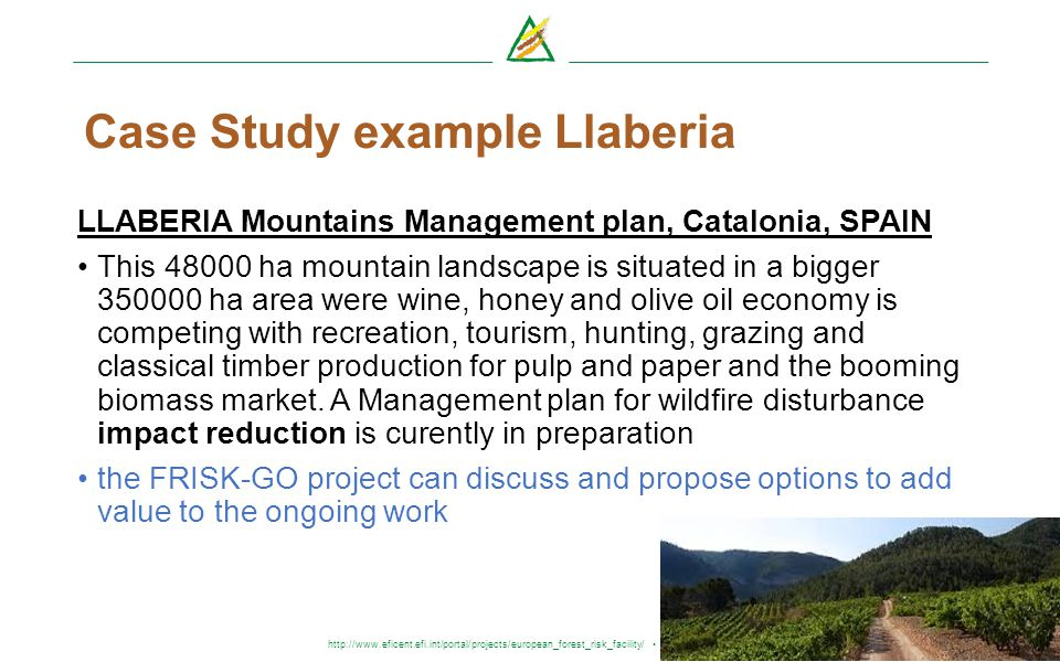 http://www.eficent.efi.int/portal/projects/european_forest_risk_facility/ frisk-go@efi.int Case Study example Llaberia LLABERIA Mountains Management p