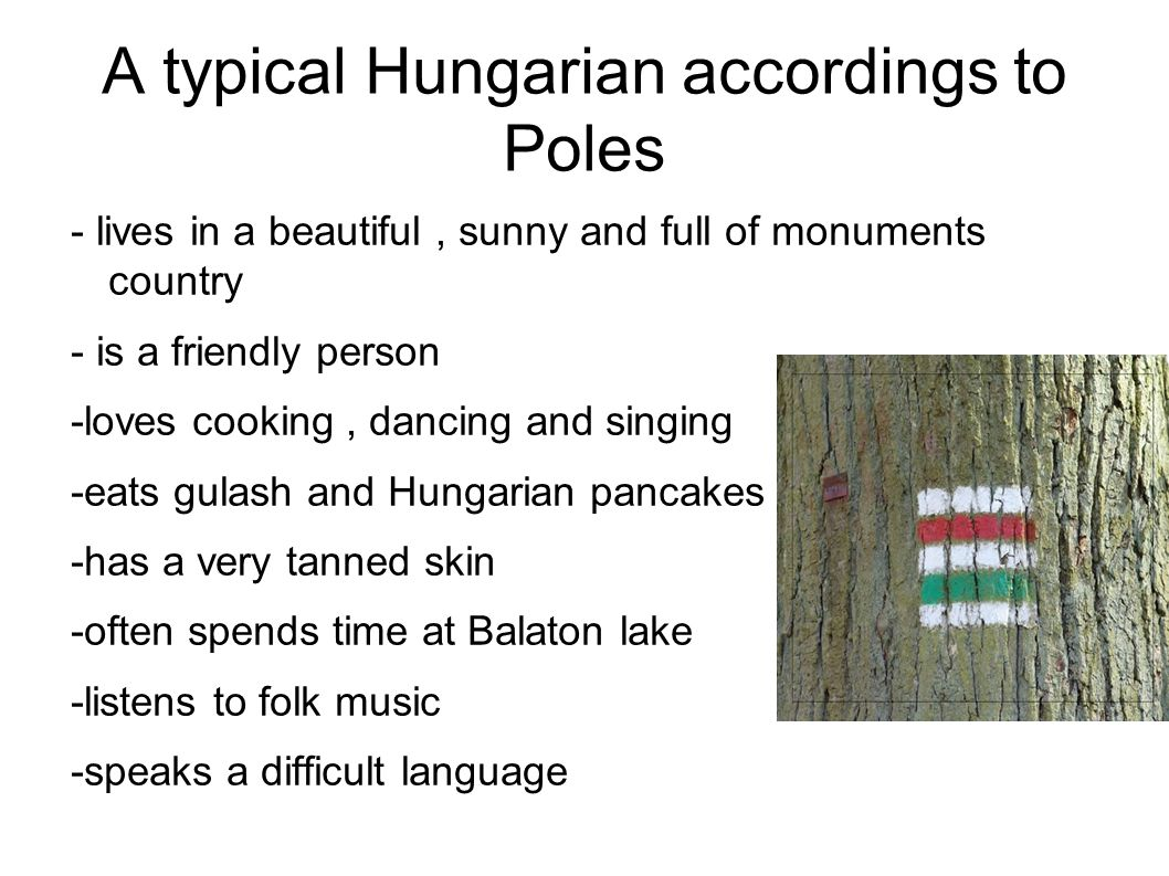 A typical Hungarian accordings to Poles - lives in a beautiful, sunny and full of monuments country - is a friendly person -loves cooking, dancing and singing -eats gulash and Hungarian pancakes -has a very tanned skin -often spends time at Balaton lake -listens to folk music -speaks a difficult language