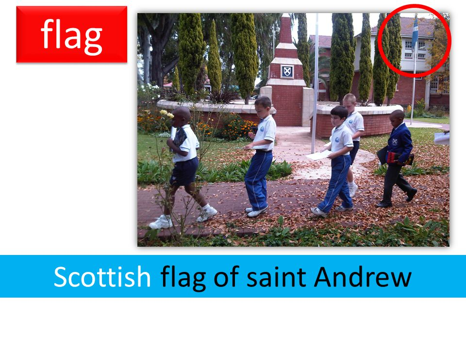flag Scottish flag of saint Andrew