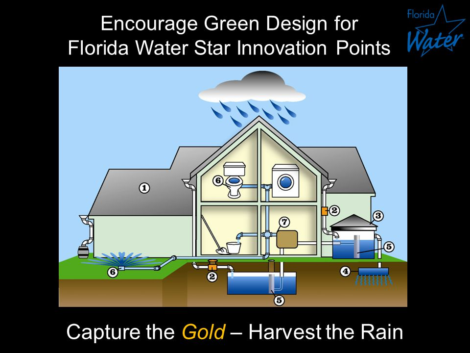 Encourage Green Design for Florida Water Star Innovation Points Capture the Gold – Harvest the Rain