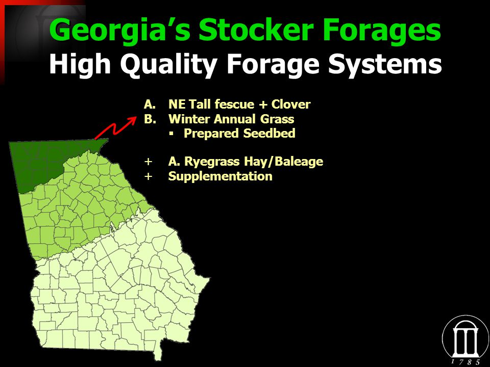 Georgias Stocker Forages High Quality Forage Systems A.NE Tall fescue + Clover B.Winter Annual Grass Prepared Seedbed +A.