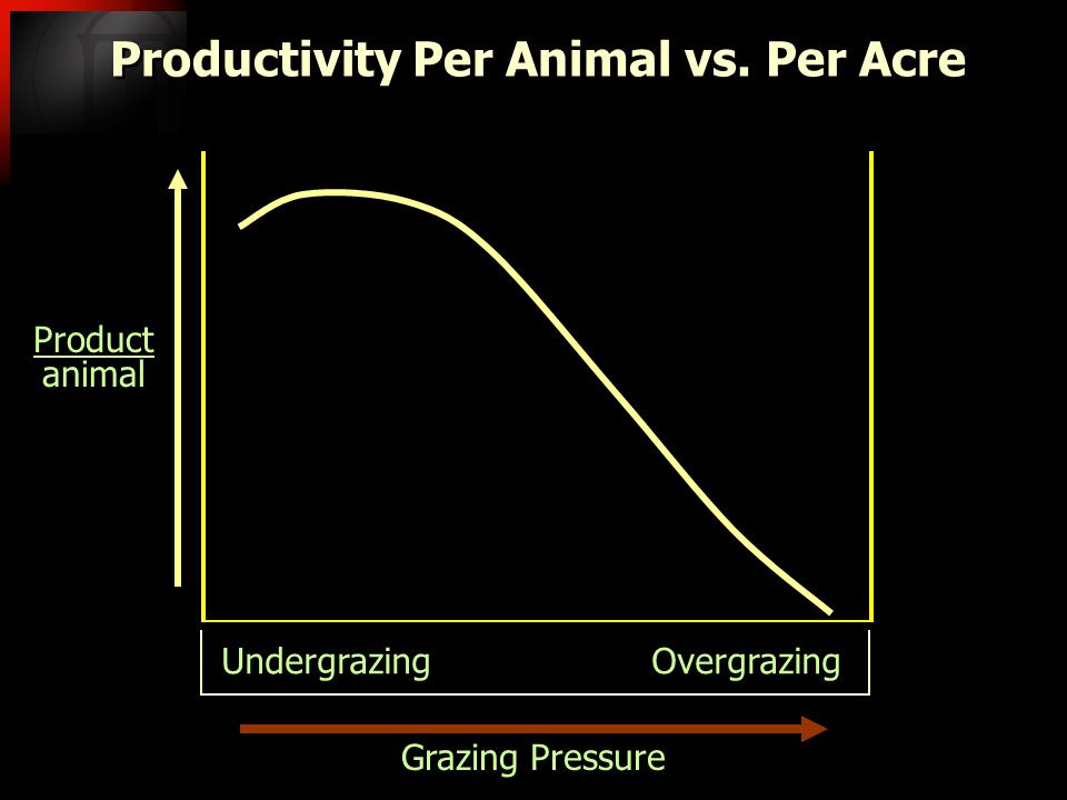 Grazing Pressure Productivity Per Animal vs.