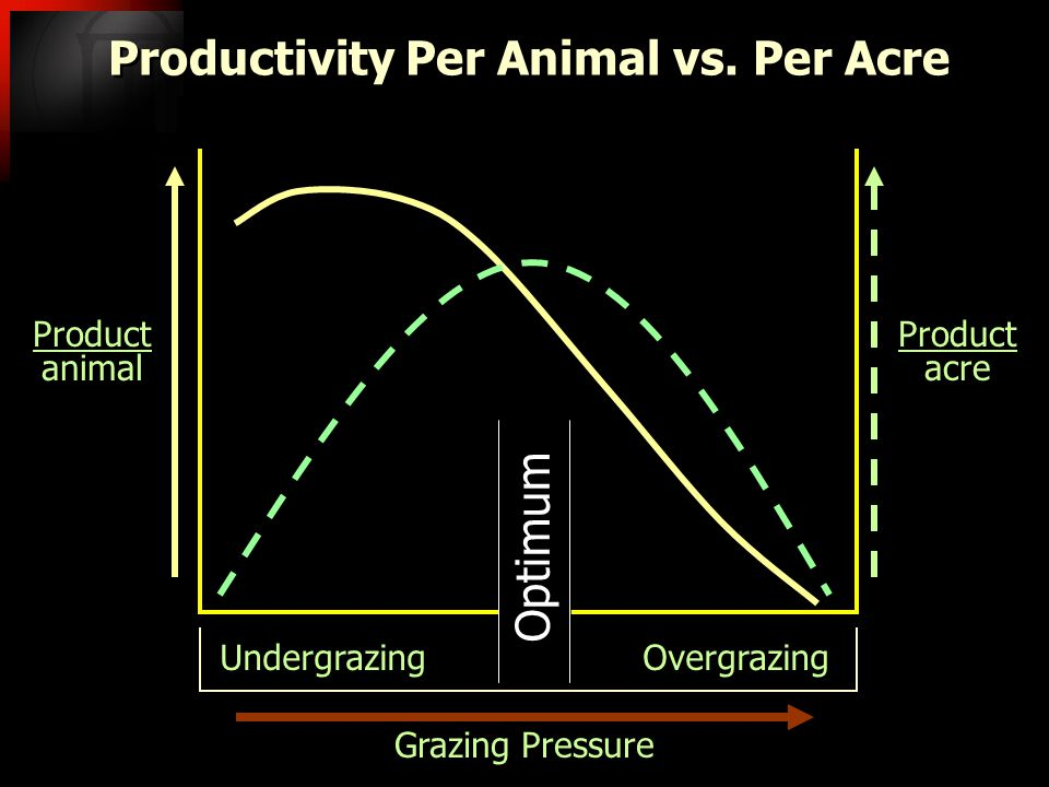Grazing Pressure Undergrazing Overgrazing Productivity Per Animal vs. Per Acre Product animal Product animal Product acre Product acre Optimum